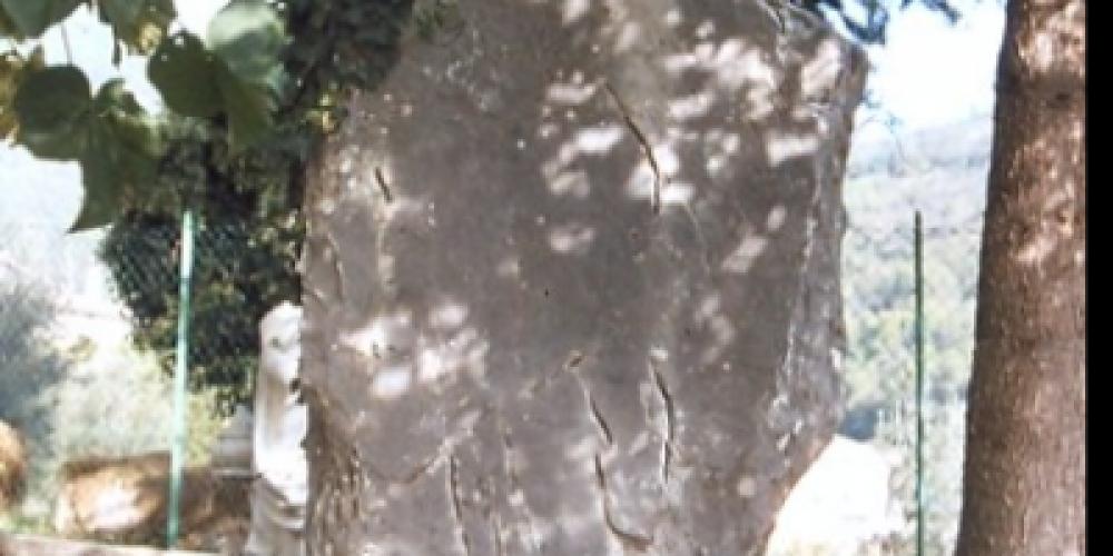 Menhir di Nicciano (TR)