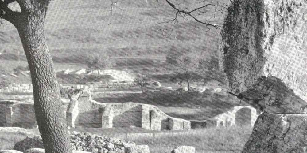 Carsulae Wood. Come rimboschire un sito archeologico